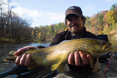 muskegon brown trout